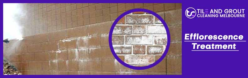 Efflorescence Treatment Melbourne