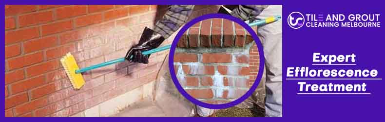 Expert Efflorescence Treatment Melbourne-